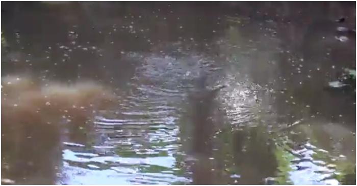 Ao nước sôi gần trăm tuổi bí ẩn ở Vĩnh Long - Hình 2