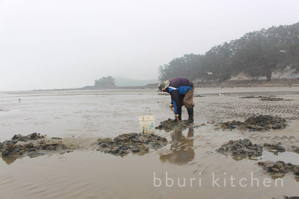Cá dương vật, món ăn khiến người dân Hàn Quốc tranh nhau mua quanh năm - Hình 1