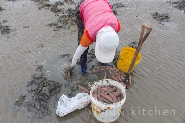 Cá dương vật, món ăn khiến người dân Hàn Quốc tranh nhau mua quanh năm - Hình 3