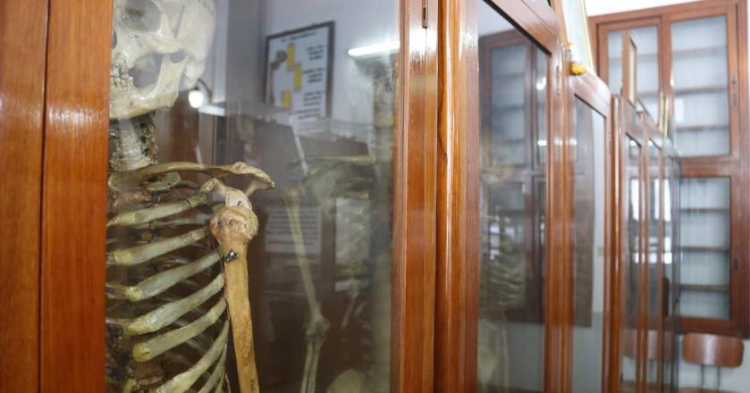 Thanh niên cứng cũng phát khiếp khi bước chân vào bảo tàng chết chóc này - Hình 1