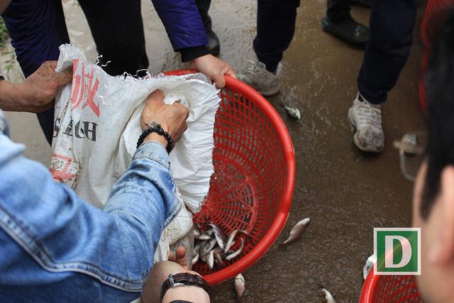 Hàng vạn người dự Lễ phóng sinh, hơn 5 tấn cá được thả xuống sông Hồng - Hình 13