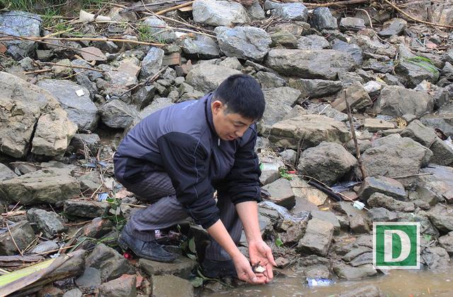 Hàng vạn người dự Lễ phóng sinh, hơn 5 tấn cá được thả xuống sông Hồng - Hình 23