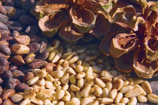 8 loại hạt vừa ăn vặt vui miệng vừa hỗ trợ giảm cân - Hình 8
