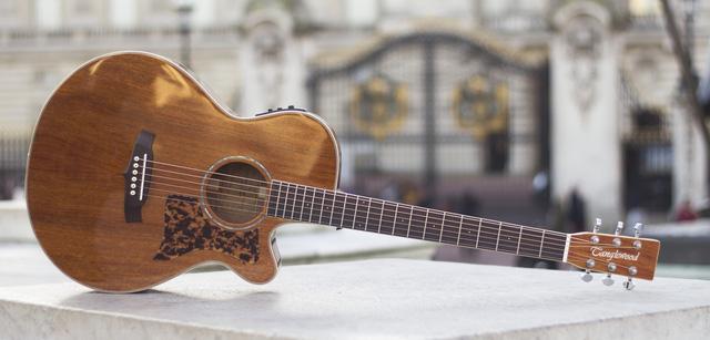 Tanglewood: Hãng guitar nổi tiếng Anh Quốc đã có mặt tại Việt Nam - Hình 2
