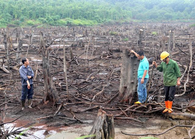 Van khóa bị phá hoại, hồ thủy lợi trơ đáy giữa mùa mưa - Hình 1