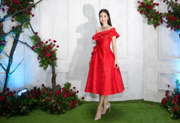 Hé lộ kiểu váy vi diệu giúp Đỗ Mỹ Linh chinh phục hàng triệu fan trong hai năm nhiệm kỳ Hoa hậu - Hình 16