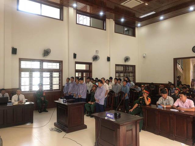 Phá rừng pơ mu ở Nam Giang, cựu phó đồn biên phòng lãnh 4 năm tù - Hình 3