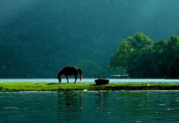 Chiêm ngưỡng các vườn quốc gia đẹp nhất Việt Nam khiến bạn chỉ muốn xách ba lô đi thêm vài lần nữa - Hình 16