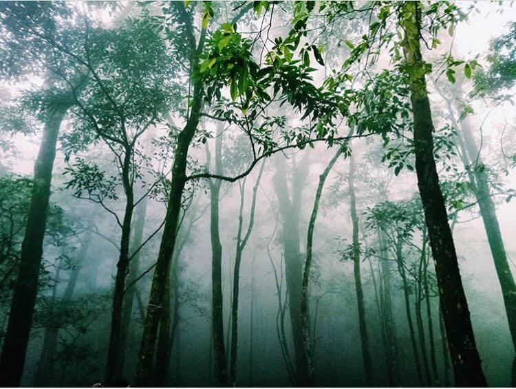 5 công trình bị bỏ hoang tại Việt Nam, muốn có những bức ảnh kì bí hết cả hồn thì nhất định phải đến! - Hình 45
