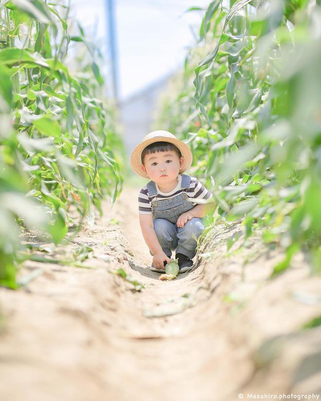 Cậu nhóc Nhật Bản đầu nấm má phính với 1001 biểu cảm không yêu không được - Hình 19