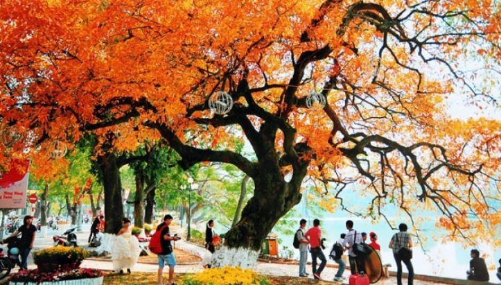 Những chuyến du lịch mùa thu sao có thể bỏ lỡ những điểm đến lãng mạn nhất châu Á này - Hình 15