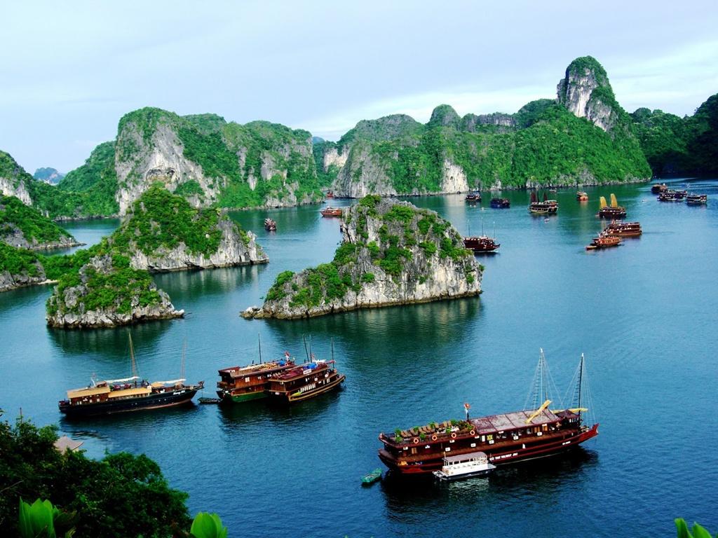 Cấm đánh bắt cá trong vịnh Hạ Long - Hình 1