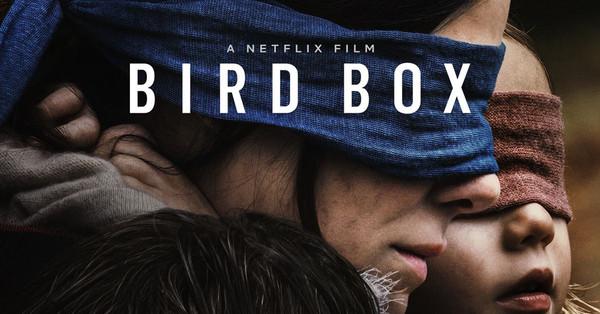 Làm thử thách như phim Bird Box, tài xế gây ra tai nạn kinh hoàng trong khi bịt mắt! - Hình 1
