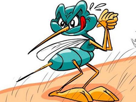 Sáng cười: Muỗi cũng phải sợ - Hình 1