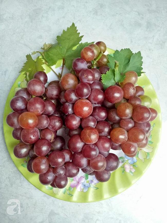 Kinh nghiệm trồng cả vườn cây trái xum xuê như trang trại trên sân thượng của mẹ đảm Biên Hòa - Hình 17