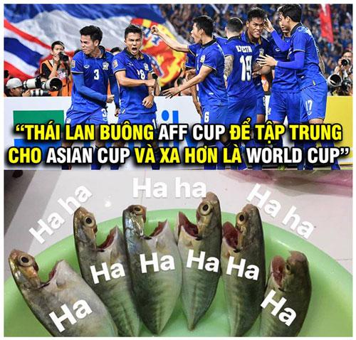 Ảnh chế: Việt Nam phải gánh cả Đông Nam Á tại Asian Cup - Hình 4