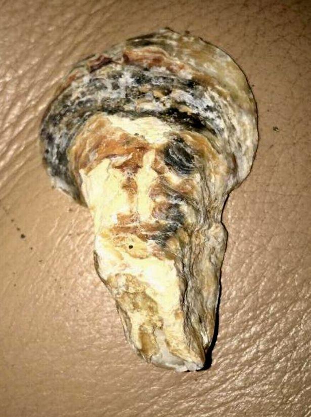 Sốc khi nhặt được vỏ sò hình gương mặt trùm khủng bố bin Laden - Hình 1