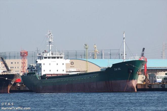 Tàu hàng bị bão Hagibis đánh chìm trên vịnh Tokyo : Thủy thủ Việt Nam được cứu - Hình 1