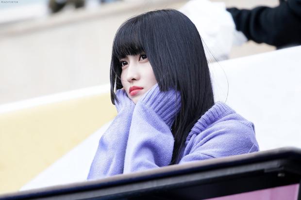 Idol Hàn diện kiểu tóc Hime: từ Irene đến Momo đều xinh xuất thần nhưng lại có 1 người khiến dân tình ngứa mắt - Hình 2