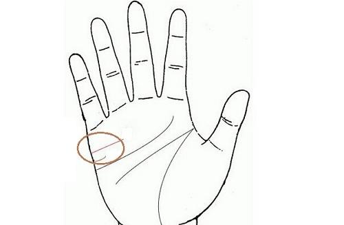 Muốn biết đàn ông trăng hoa hay chung thủy, phụ nữ chỉ cần nhìn đường chỉ tay là biết - Hình 1