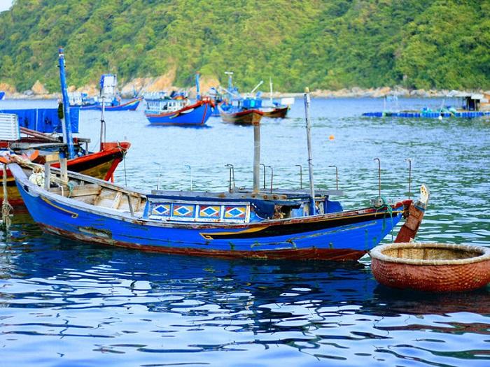Gỏi cá trích Nam Ô - đặc sản mang đậm hương vị biển Miền Trung - Hình 2
