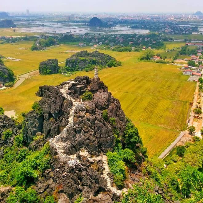 Lúa trải vàng ở thánh địa sống ảo Ninh Bình - Hình 1