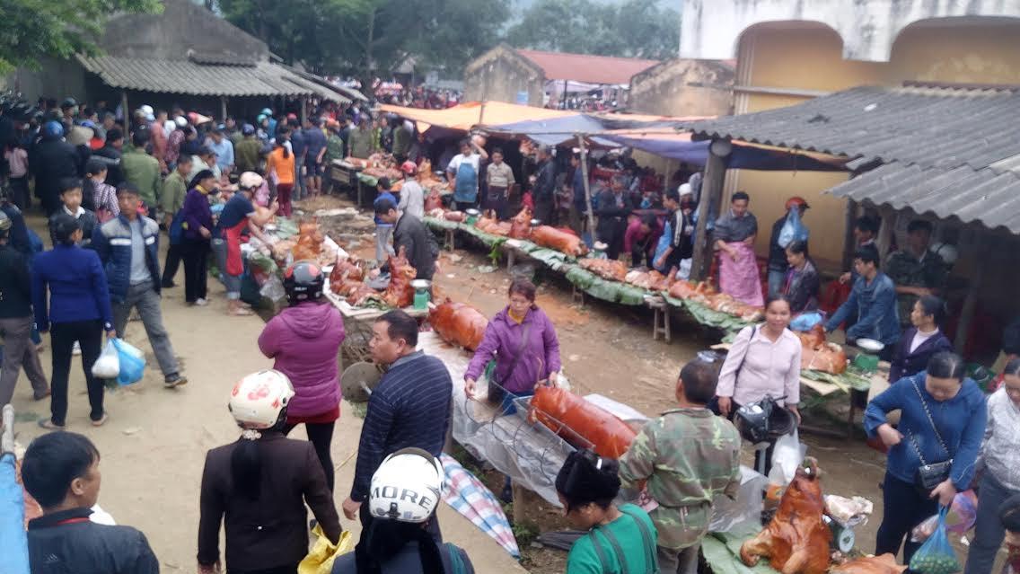 Ngắm rừng lợn quay ở Lạng Sơn, ai cũng phát thèm - Hình 1