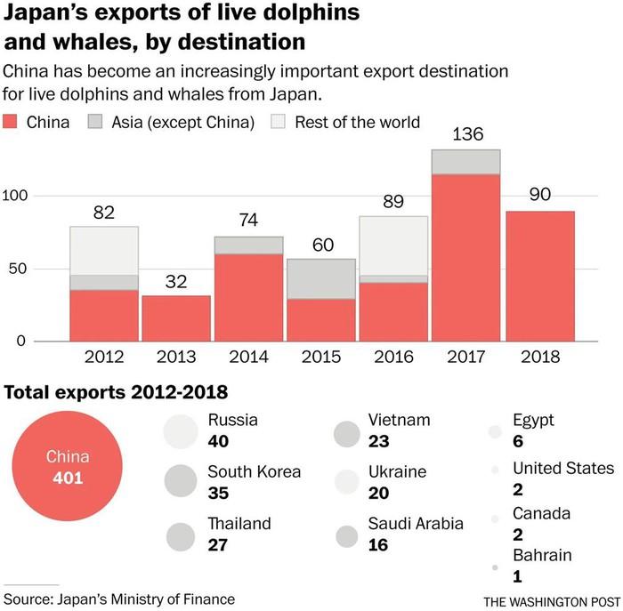 Người Nhật săn cá heo đáp ứng cơn khát cá của Trung Quốc - Hình 2