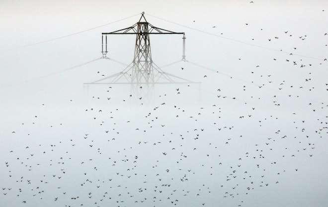 Vẻ đẹp của các thành phố trên thế giới khi chìm trong sương sớm (P1) - Hình 1