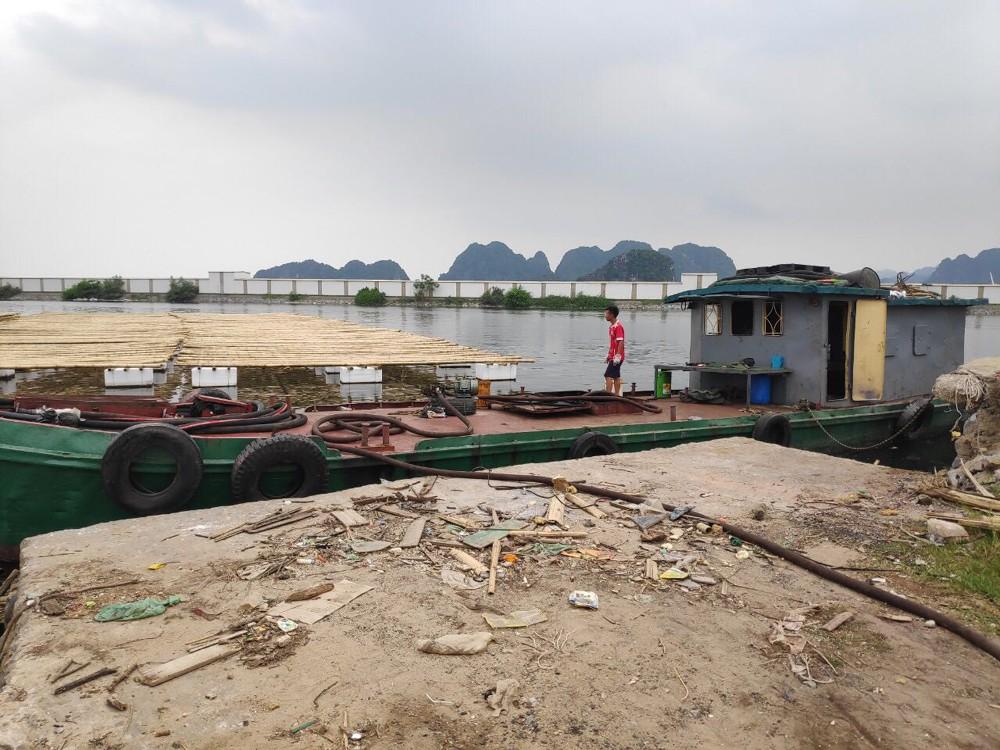 Tái diễn tình trạng tiêu thụ than, xăng dầu trái phép ở Cẩm Phả - Hình 1