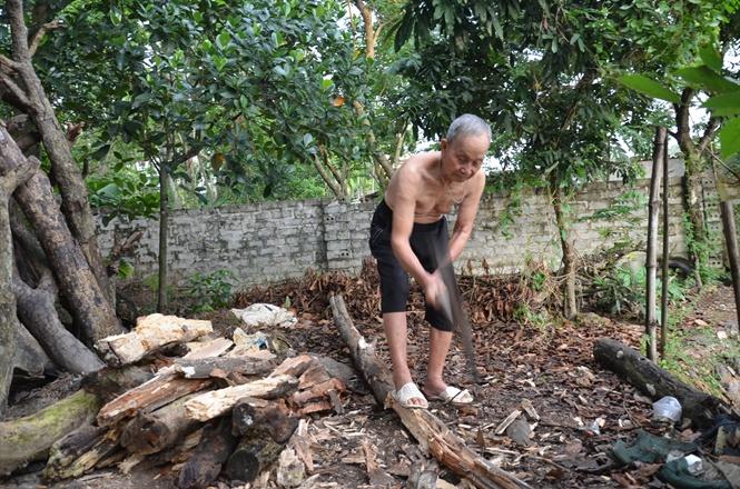 Lạ Ninh Bình: Hơn 100 tuổi vẫn vác thóc, lật đá, bổ củi phăm phăm - Hình 1