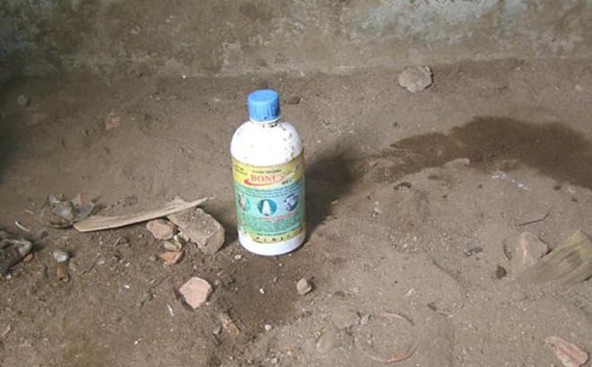 Hải Phòng: Nữ sinh 2003 tử vong vì uống thuốc diệt cỏ - Hình 1