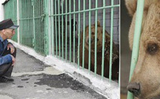 Gấu nâu Katya - nữ tù nhân kì lạ nhất thế giới được ân xá sau khi thụ án 15 năm tù trong một nhà giam toàn tội phạm nguy hiểm - Hình 1