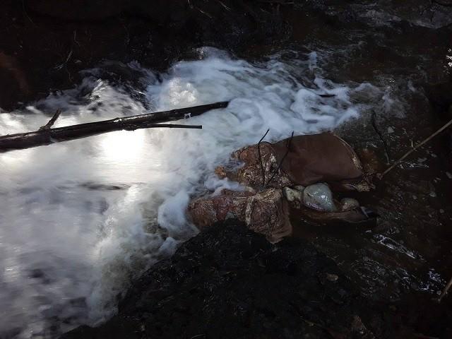 Lâm Đồng: Xót xa, nhà nghèo nuôi mãi được con bò bị trộm giết thịt - Hình 1