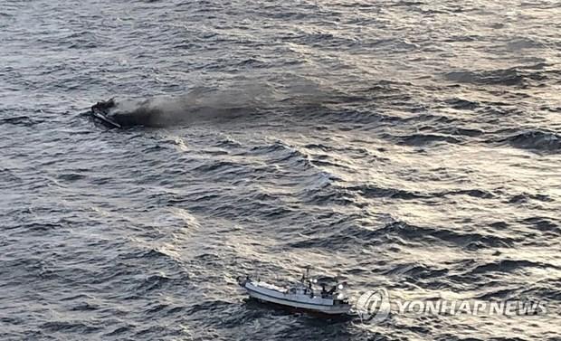 Hàn Quốc: Sáu thuyền viên Việt Nam mất tích ngoài khơi đảo Jeju - Hình 1