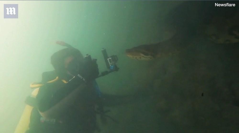 Bà nội bé Na vui vẻ cho thợ lặn quay phim, kỉ niệm ngày gặp gỡ - Hình 2