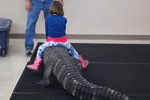 Hãi hùng trò chơi nguy hiểm nhất thế giới: Bé gái cưỡi cá sấu trong ngày sinh nhật - Hình 1