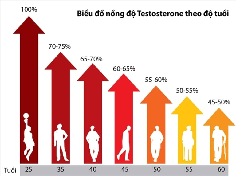Hiện tượng suy giảm testosterone có chữa được không? - Hình 2