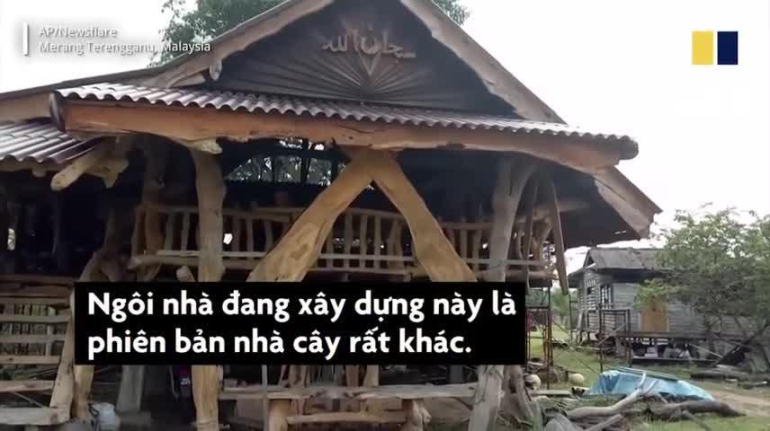 Ngôi nhà cây độc đáo của nhà thơ Malaysia - Hình 1
