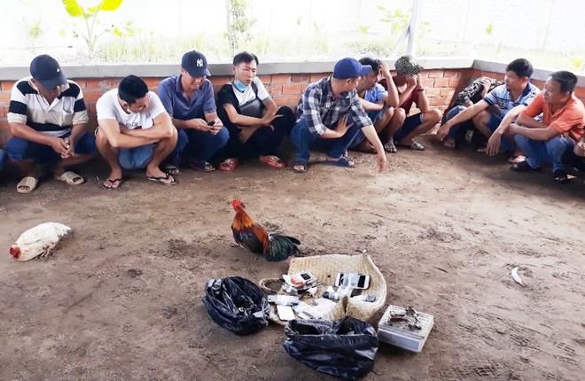 Bắt giữ 21 người đá gà ăn tiền - Hình 1