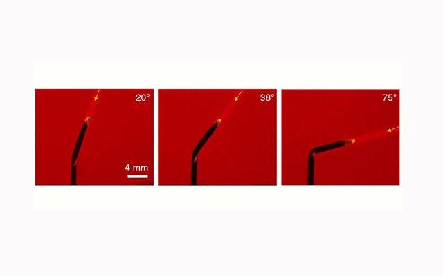Hoa hướng dương nhân tạo có thể tự uốn cong hướng về phía ánh sáng - Hình 1