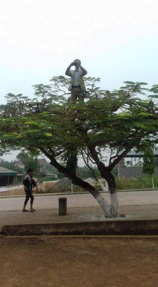 Chất chơi như thầy giáo trường người ta, leo hẳn lên cây để chụp ảnh cho học sinh, dân mạng hài hước ví von: Superman giữa đời thực - Hình 1