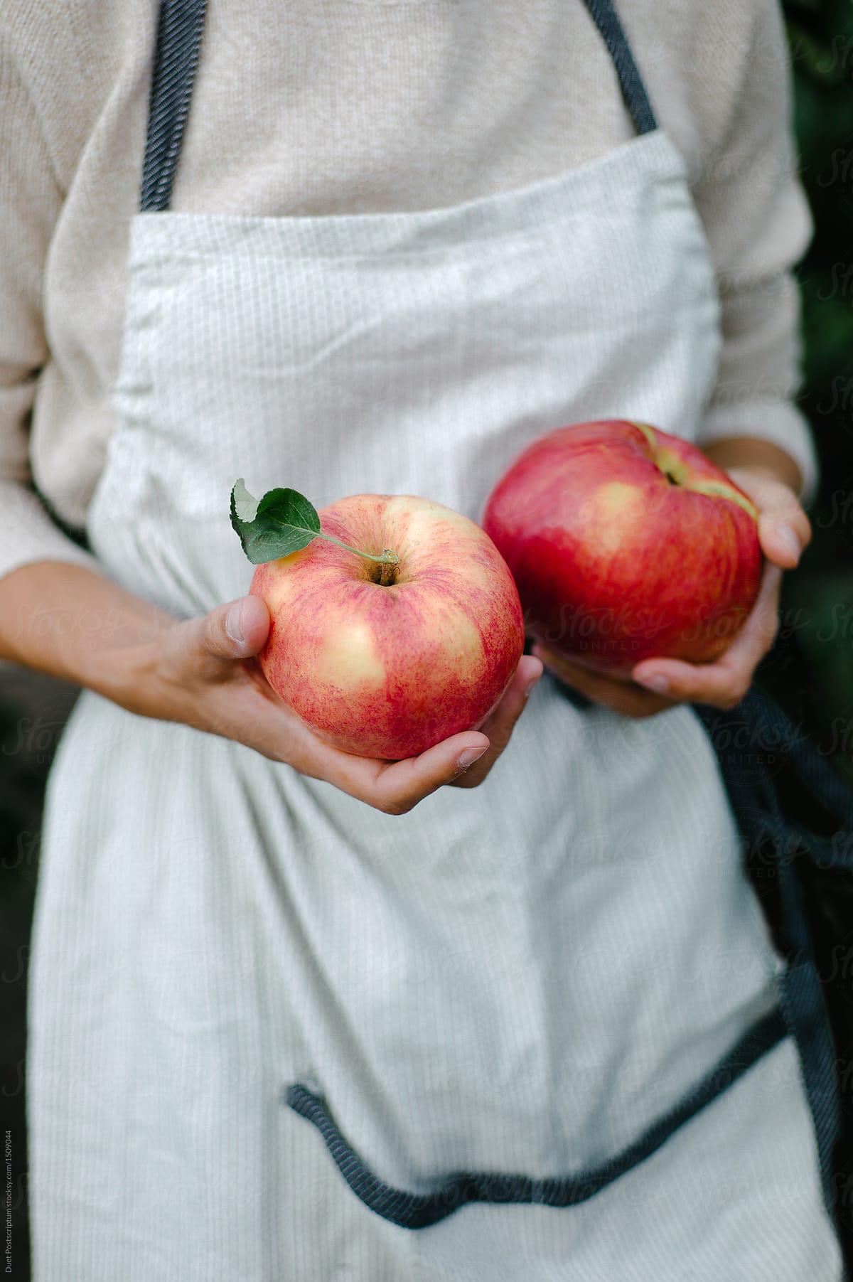 5 loại trái cây được ví là thần dược của làn da lão hóa, cân hết tất cả các dòng mỹ phẩm đắt tiền bạn từng dùng - Hình 2