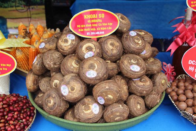 Độc đáo các mặt hàng nông sản sạch Thuận Châu, Sơn La - Hình 1