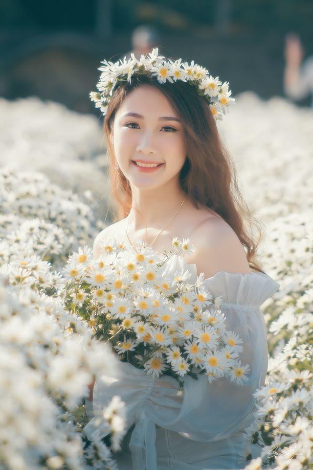 Thiếu nữ xinh đẹp gây sốt bên vườn cúc họa mi tinh khôi ở Hải Phòng - Hình 5