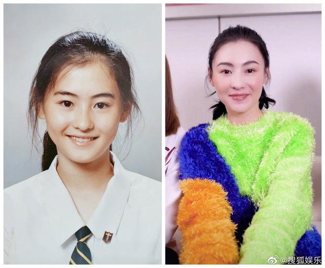Ảnh thẻ thời học sinh của Trương Bá Chi gây choáng: Gương mặt sắc sảo, bảo sao là tường thành nhan sắc Hong Kong - Hình 2