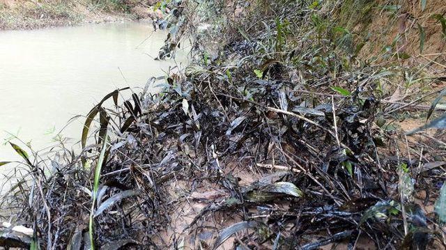 Quảng Trị: Xử phạt người quản lý trạm trộn để tràn 200 lít dầu thải ra môi trường - Hình 2