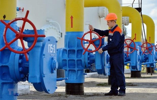 EU sẽ không thiếu năng lượng cả khi Nga-Ukraine không đạt thỏa thuận - Hình 1