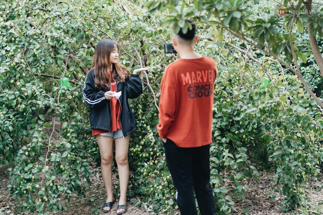 Khám phá vườn táo của trường Đại học rộng nhất Việt Nam, chỉ mất 15k là ăn tẹt ga lại còn được đống ảnh sống ảo - Hình 2