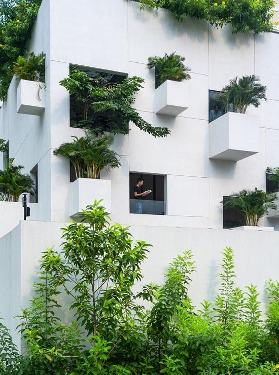 Nhà Sài Gòn trổ 10 mảnh vườn lơ lửng - Hình 1